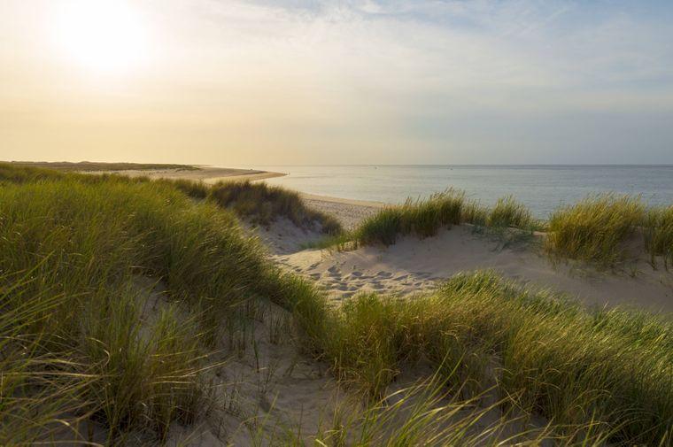 Die Strände auf der Insel Sylt sind geprägt von malerischen Dünen.