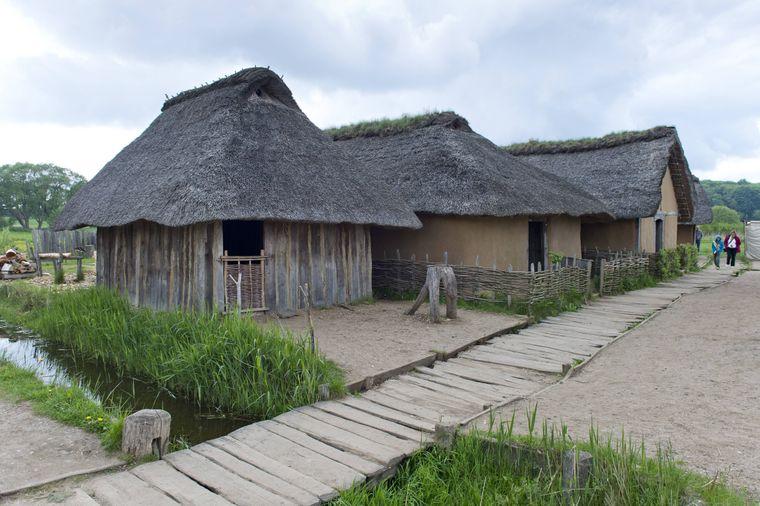Schilfgedeckte rekonstruierte Wikingerhäuser im Wikinger-Museum Haithabu.