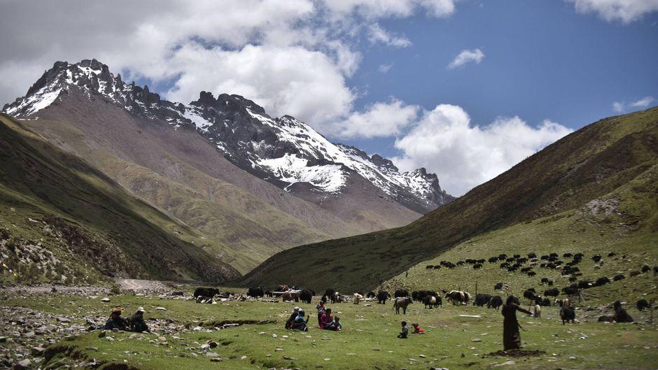 Vor den erhabenen Gipfeln verweilen Tibeter auf der Wiese. Genau hier, in der Qinghai-Provinz, gibt es ambitionierte Pläne eines zusammenhängenden Nationalparks.