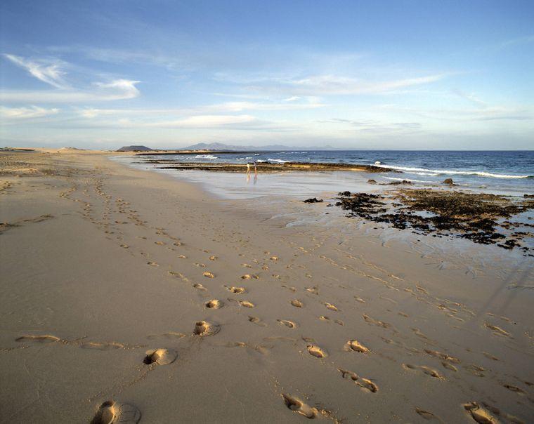 Im Nordosten der Insel Fuerteventura gehören die Playas de Corralejo zu den schönsten Stränden.