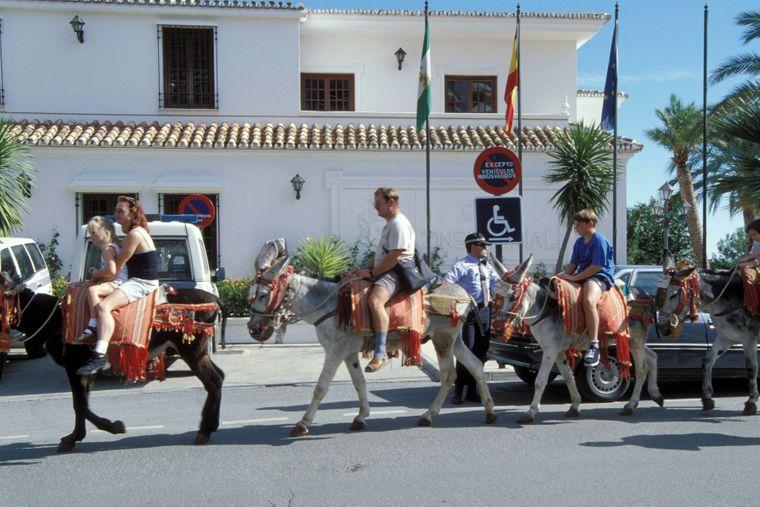Wie in einer Karawane schleppen sich die Esel durch die sengende Hitze Andalusiens, der heißesten Region Europas.
