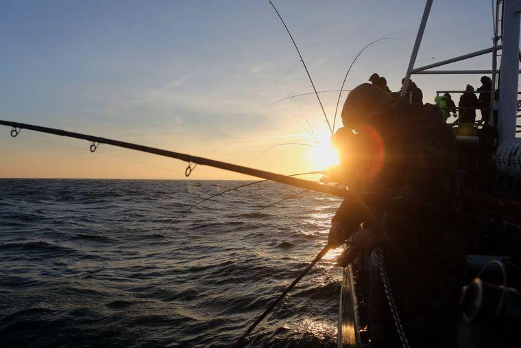 Beim Hochseeangeln auf der Ostsee könnt ihr dem Alltag leicht entfliehen.