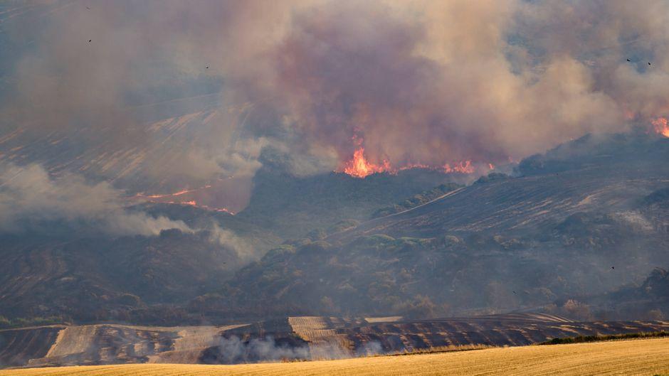 Feuer im Difesa Grande Forest in Gravina in der italienischen Region Puglia.