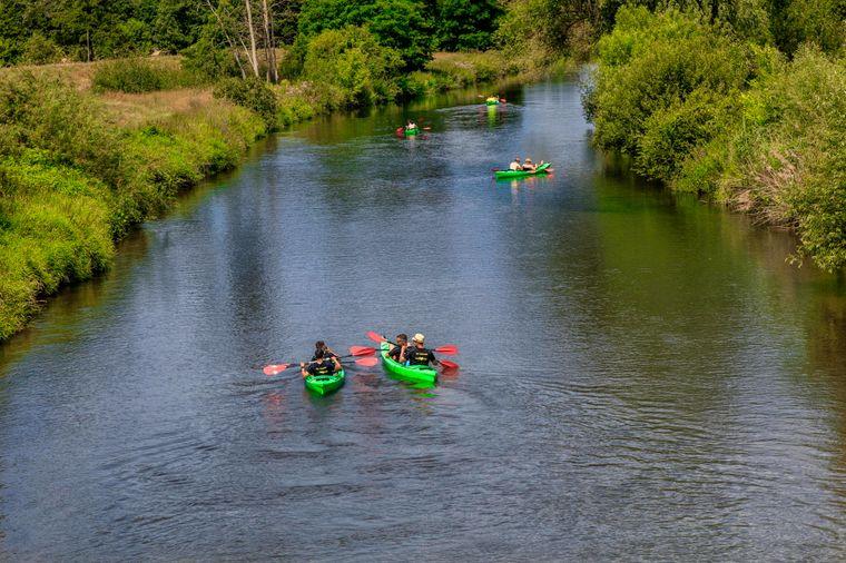 Bei einer anspruchsvollen Tagestour kann man mit dem Kanu auf der Spree stromabwärts von Cottbus nach Burg paddeln.