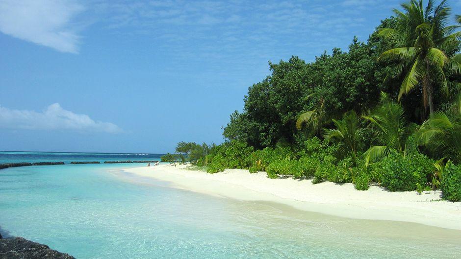 Traumstrand auf dem Atoll Maafushivaru auf den Malediven.