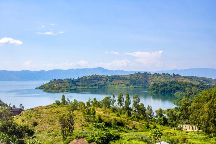 Um Schimpansen, Berggorillas und Goldmeerkatzen zu sehen, kommen Touristen nach Ruanda. Dort leben die Affen im Vulkan-Nationalpark und im Nyungwe-Wald. Insgesamt ist die Landschaft des Staates durch dicht bewachsene Berge gekennzeichnet.