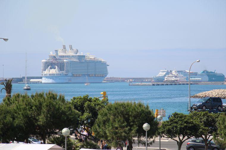 """Ein Riesenpott: Bis zu 6000 Touristen reisen mit der """"Symphony of the Seas""""."""