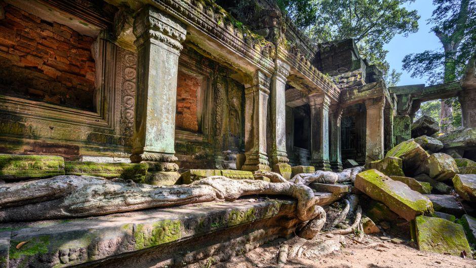 Tempelanlage Ta Prohm in Kambodscha.