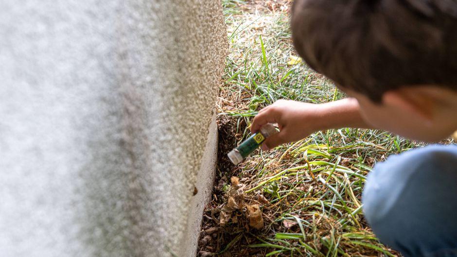 Nimm Schatz! Geocaching macht auch Kindern Spaß.