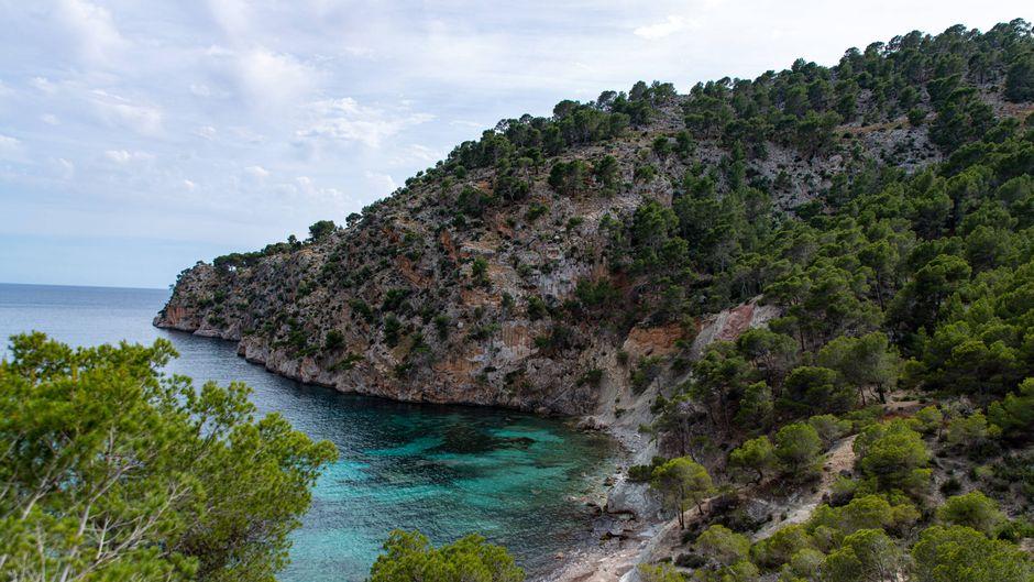 Die Schönheit der spanischen Urlaubsinsel Mallorca könnte in diesem Sommer doch noch von Deutschen bewundert werden. (Symbolbild)