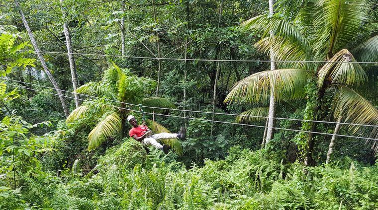 """""""Canopy"""" – an Stahlseilen von Baum zu Baum zurück ins Tal."""