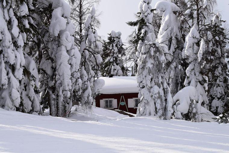 Auf einem Berg bei Vuokatti liegt mitten in einem kleinen Wäldchen das Café Ripa's Kuppila. Hier lässt es sich wunderbar aufwärmen.