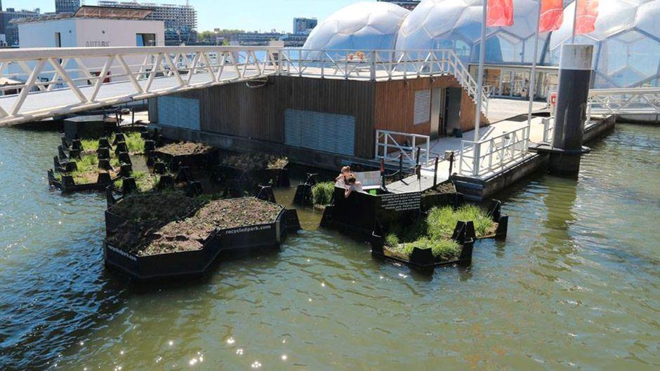 Noch ist der schwimmende Park im Hafen von Rotterdam klein. Je mehr Plastik aus dem Wasser gefischt wird, desto größer könnte er werden.