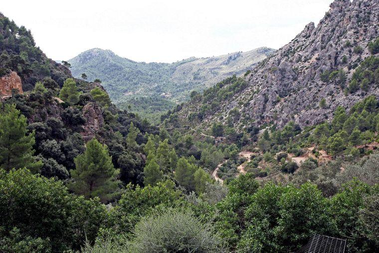 Das Naturreservat La Reserva Puig de Galatzó ist eine der schönsten Landschaften Mallorcas.