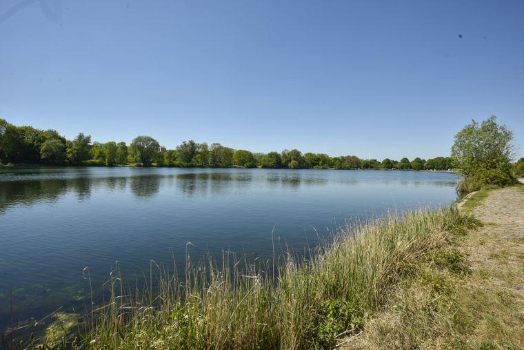 Einen tollen Ausblick auf den Hohnsensee in Hildesheim hast du auf einem kleinen Stellplatz am See.