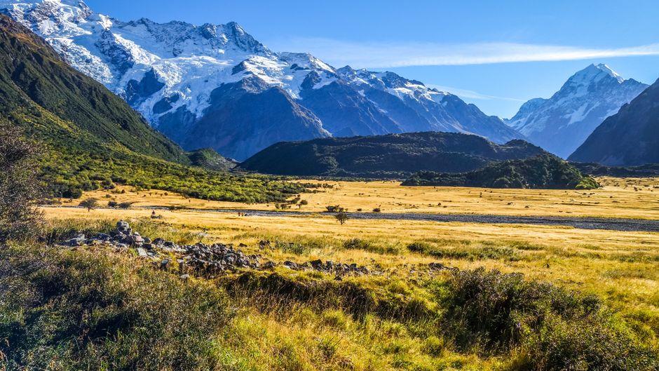 Kennst du dich mit den kuriosen Fakten Neuseelands aus? (Symbolbild)