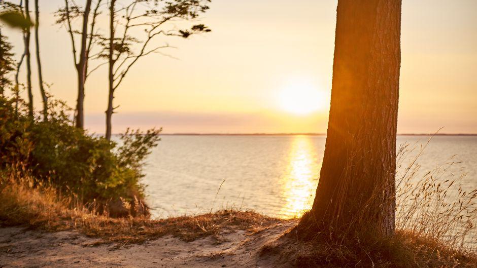 Die Region rund um Schwedeneck lädt zu ausgiebigen Spaziergängen an Steilküsten ein.