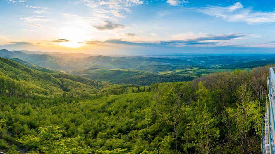 Ausblick auf den Wienerwald.