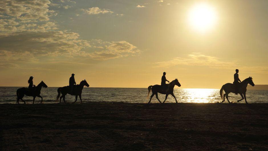 Ausritt am Strand im Sonnenuntergang – viel schöner geht's wohl nicht.