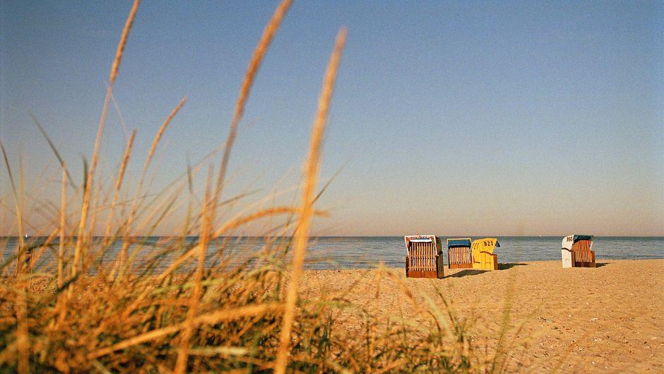 Am Strand der Hohwachter Bucht bieten Strandkörbe Ausruhmöglichkeiten.