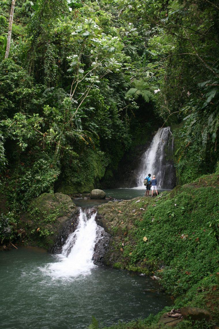 Wasserfall im Regenwald Grenadas.