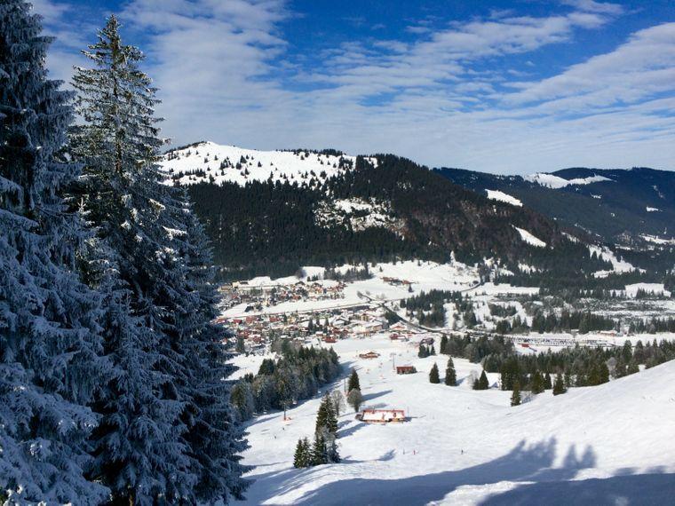 Blick entlang der Tannen Richtung Gundhütte. Im Hintergrund liegt Oberjoch.