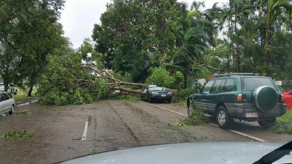 """In der australischen Stadt Darwin hat Zyklon """"Marcus"""" am Wochenende große Schäden angerichtet."""