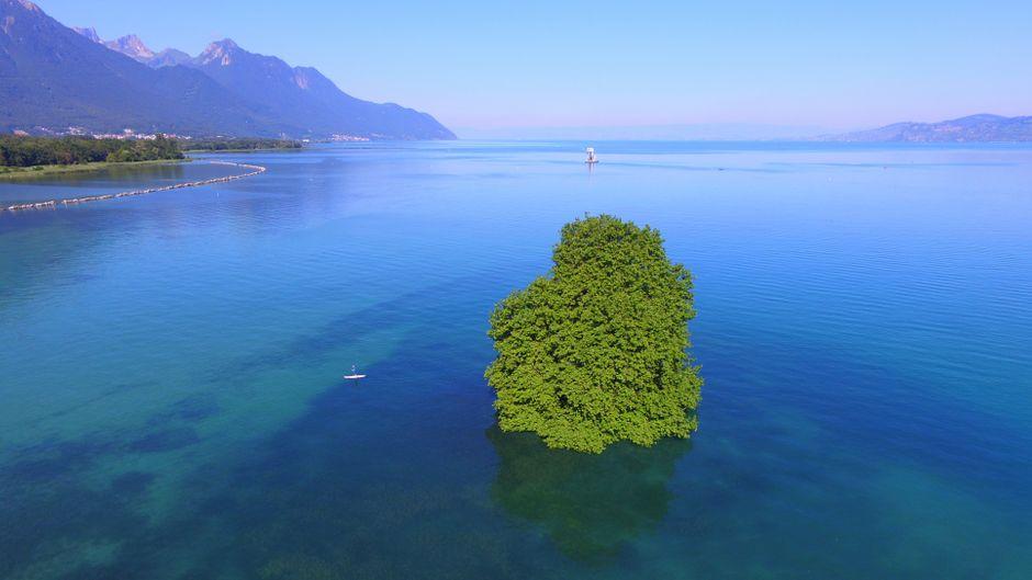 Die Insel Île de Peilz im Genfer See hat das Potenzial zum neuen Insta-Star.