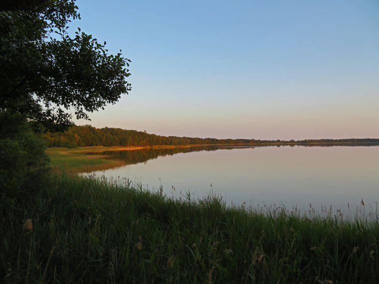 Aussicht von einem Vogelbeobachtungspunkt auf der Mecklenburgischen Seenplatte.
