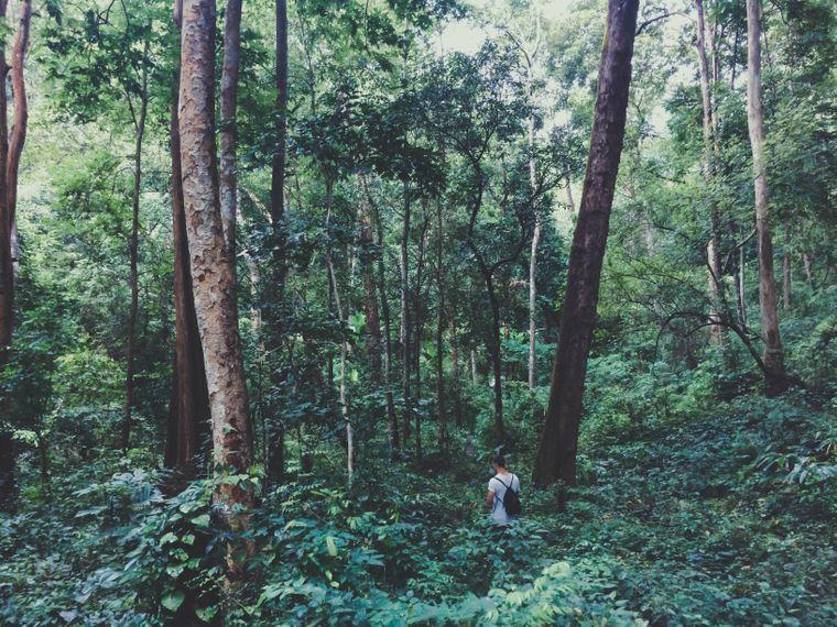 Oleg Burhanau im Dschungel bei Pai, Thailand.
