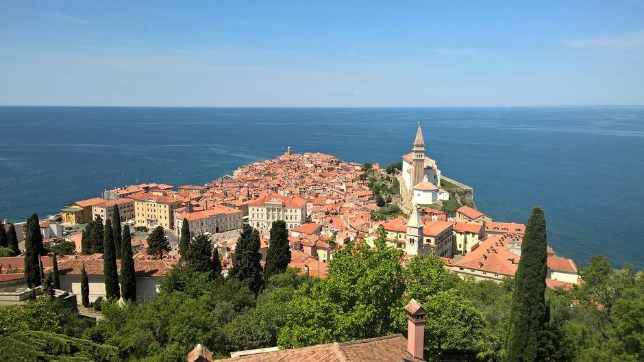 An der slowenischen Adriaküste liegen Städte wie das malerische Piran. Es lohnt sich aber auch, die Landschaft beim Wandern zu erkunden.