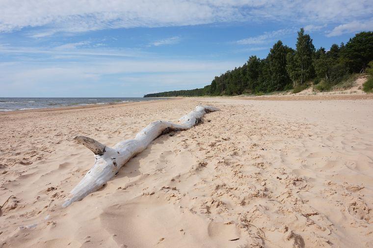 Hier würdest du am liebsten sofort dein Zelt aufschlagen? Das kannst du, denn der Strand befindet sich in Lettland und dort ist Wildcamping erlaubt.