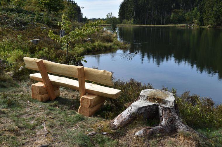 Entlang der sieben Kilometer langen Wanderroute im Harz sind immer wieder Bänke um die Aussicht zu genießen.
