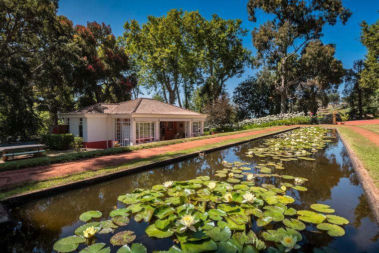 Ein Besuch der vielfältigen Palheiro-Gärten lohnt sich vor allem zur Kamelienblüte im Winter.