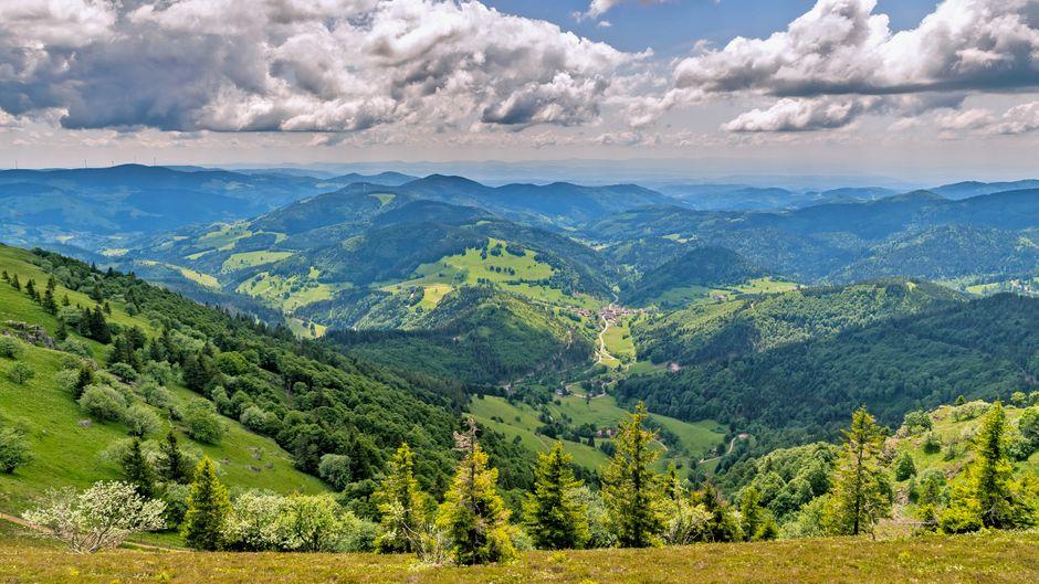Der Genießerpfad Belchensteig im Schwarzwald wurde erst kürzlich zu Deutschlands schönstem Wanderweg 2020 gewählt. Der Belchen gilt als schönster Aussichtsberg im Schwarzwald, es lohnt sich aber auch, andere Strecken zu entdecken.
