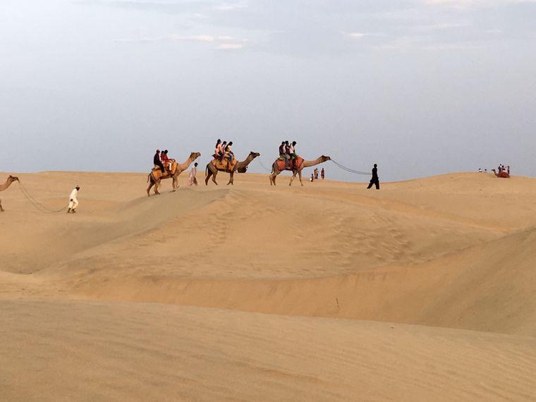 Kamelritt durch die Wüste.