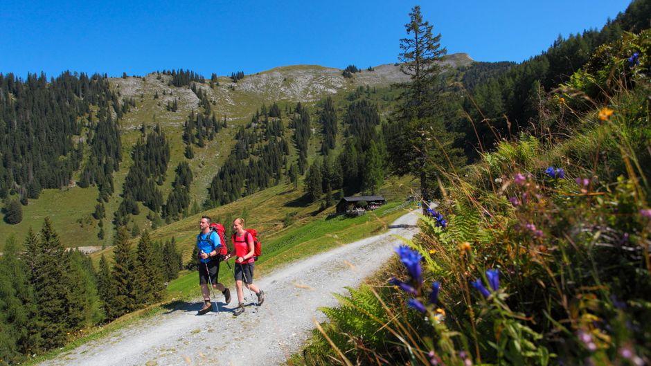 Im Großarltal stehen für Wanderer rund 400 Kilometer markierte Wanderwege bereit.