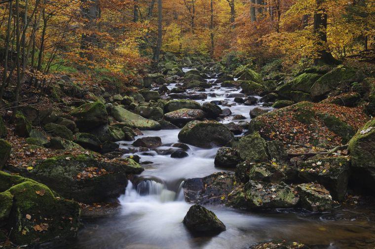 Wer durch den Harz wandert, darf sich die Ilsefälle nicht entgehen lassen. Im Herbst wirken diese im sagenumwobenen Mittelgebirge gleich viel mystischer…