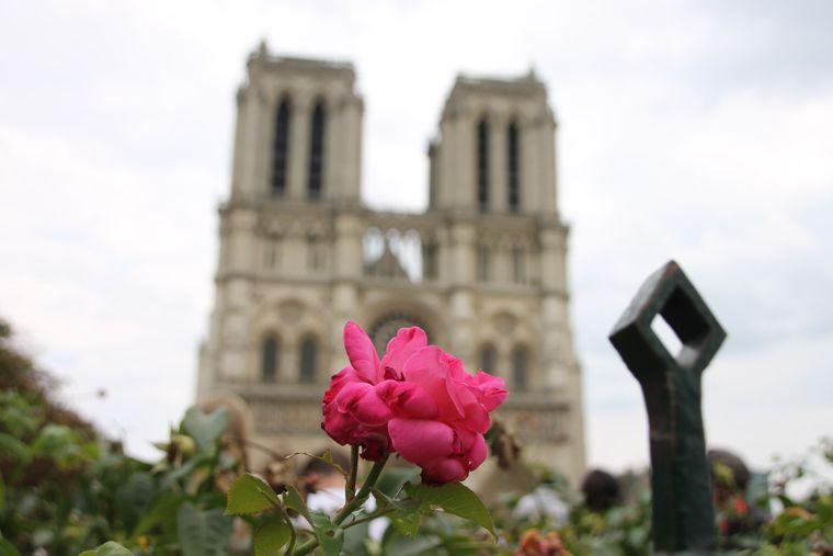 Sophie und Benjamin Haltenhof aus Kiel waren schon häufiger in Paris – und immer stand ein Besuch von Notre-Dame auf dem Programm, schreiben sie zu diesem Foto.