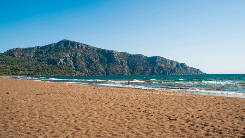 Der Iztuzu-Strand im türkischen Dalyan-Delta gilt als beliebte Brutstätte der grünen Meeresschildkröte.
