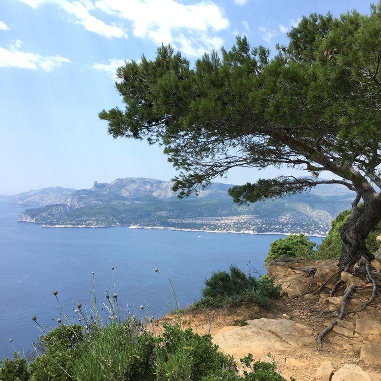 Von der Panoramastraße Route des Crêtes hast du einen unvergleichlichen Ausblick auf die Küste - wie hier etwa auf Cassis.