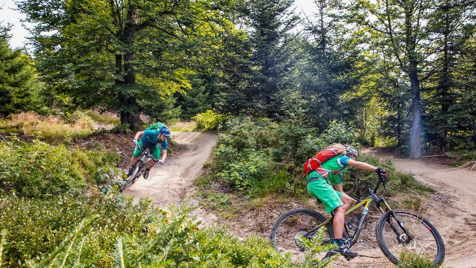 Action pur: Im Bayerischen Wald kannst du mit dem Mountainbike steile Wege hinunterdonnern! Aber die Urlaubsregion bietet dir noch zahlreiche andere Möglichkeiten, aktiv zu sein.