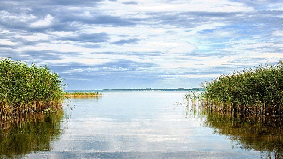 Im Lieper Winkel zwischen Achterwasser und Peenestrom findet man sie noch, die Ursprünglichkeit und Abgeschiedenheit.