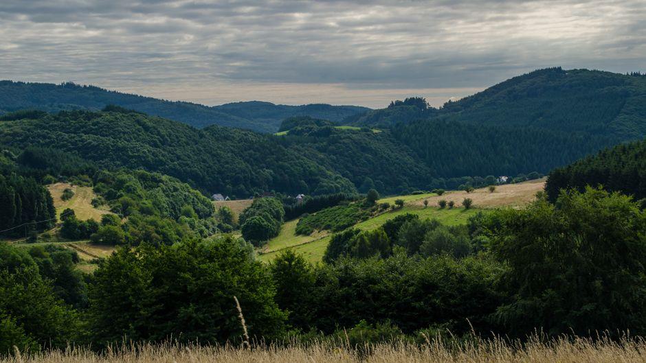 Die Eifel von ihrer schönsten Seite: Auf dem Sieben-Dörfer-Weg der Gemeinde Baar gibt es mehrere Punkte mit toller Fernsicht.