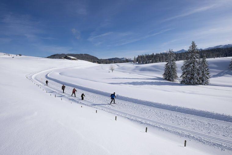 Langlauf-Loipe im Skigebiet Winklmoosalm – die Region gilt als eines der besten Langlauf-Gebiete in Deutschland.