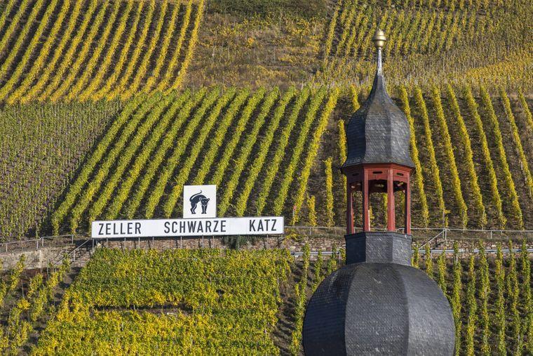 Bekannt für hervorragenden Wein: Die Zeller Schwarze Katz.