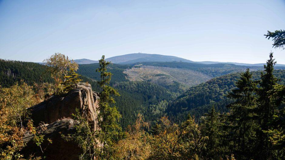 Der Blick von der Rabenklippe nahe Bad Harzburg.