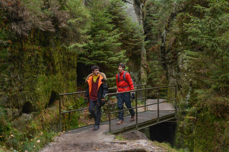 Bei einer Wanderung durch den Nationalpark Sächsische Schweiz gibt es einiges zu entdecken – wie beispielsweise die Schwedenlöcher.