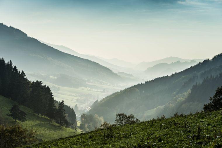 Das Elztal im Schwarzwald, eingehüllt in Nebel.