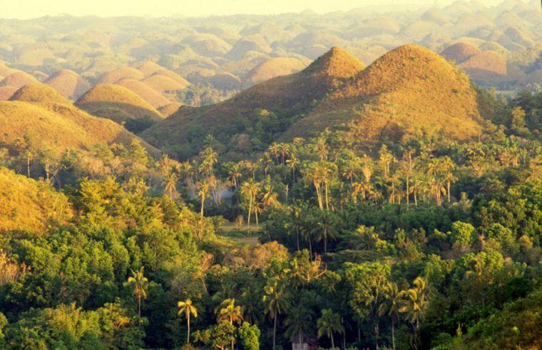 Die Schokoladenhügel von Bohol sind für viele Insel-Hopper ein Must-see.